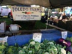 Toledo Farms