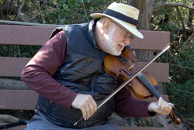 Fiddler on the bench