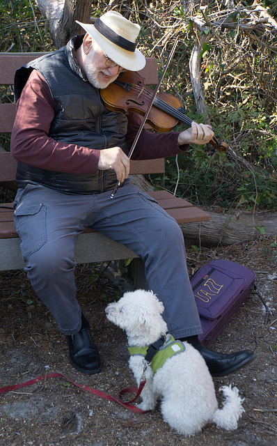 Fiddler and his dog