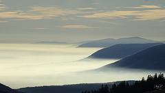 die Nebel lichten sich
