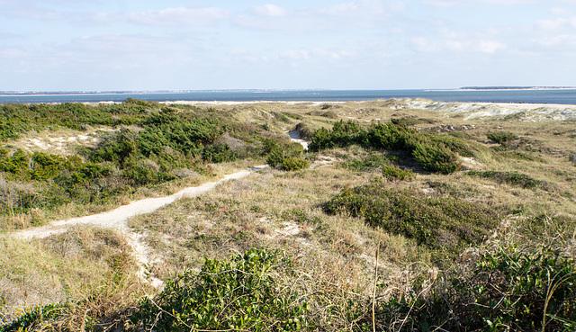 Dunescape, Elliott Coues Nature Trail