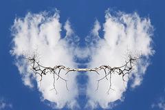 Wolken-Fledermaus (PiP)