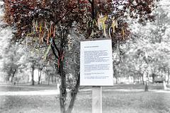 Der Baum der Geflüchteten