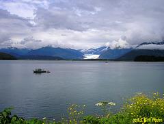 Fritz Cove and Mendenhall Glacier