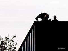 Dacharbeiten  im Gegenlicht