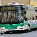 Grimma 2015 – MAN bus