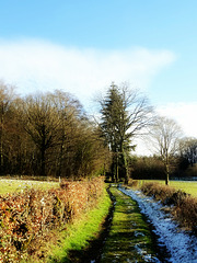 Une belle journée de janvier / A beautiful January day [ON EXPLORE]