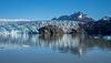 Glaciar_Grey