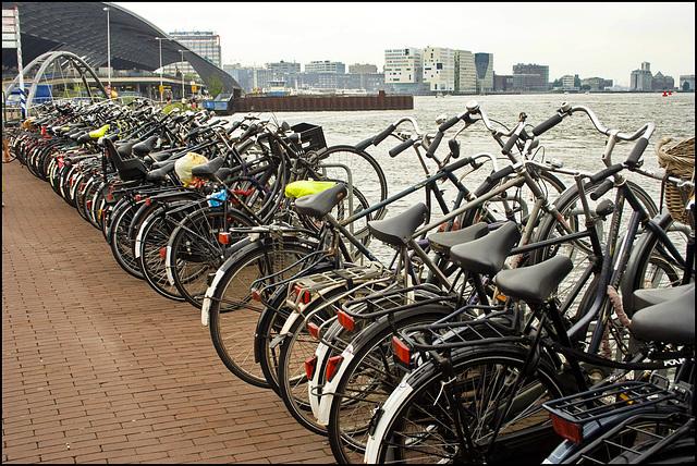 Amsterdam - capitale mondiale delle biciclette - (539)