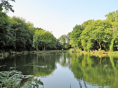 The Rosie Pool Wepre Park.
