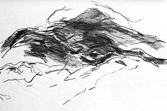 Pico sketch