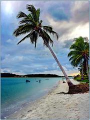 Recife :  Praia da Coroa do Avião - Baixa Verde, Itamaracá -