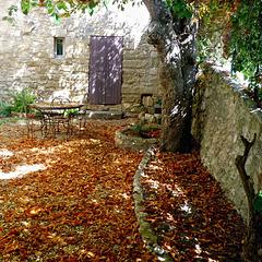 Endroit bucolique en automne