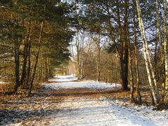 Spazierweg