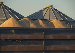 Grain Truck and Bins 01