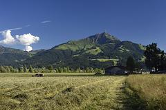 Summertime in Tyrol