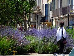 A passeggio tra i fiori