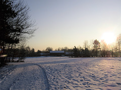 Sonnenuntergang am Steinberger See