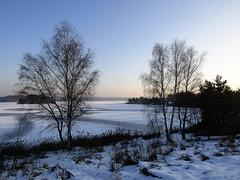 Dämmerung am Steinberger See