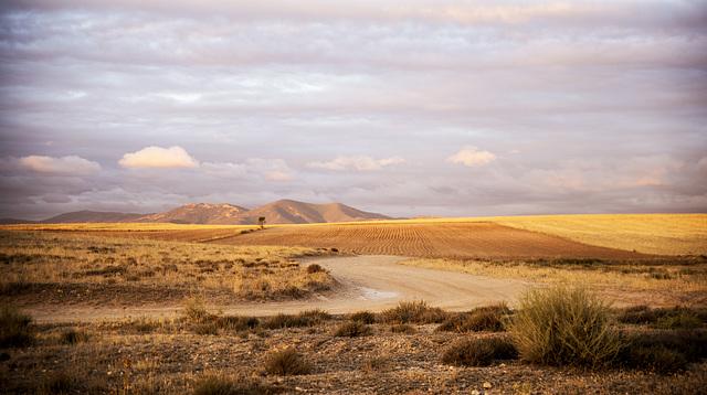 Dulce amanecer en campos de La Mancha (sobre fondo negro)