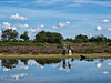 Janesmoor Pond, New Forest (3)
