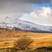 Snowdonia landscape. (1)