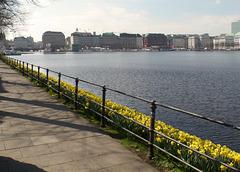 HFF aus Hamburg: An der Binnenalster