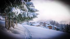 La beauté de l'hiver...