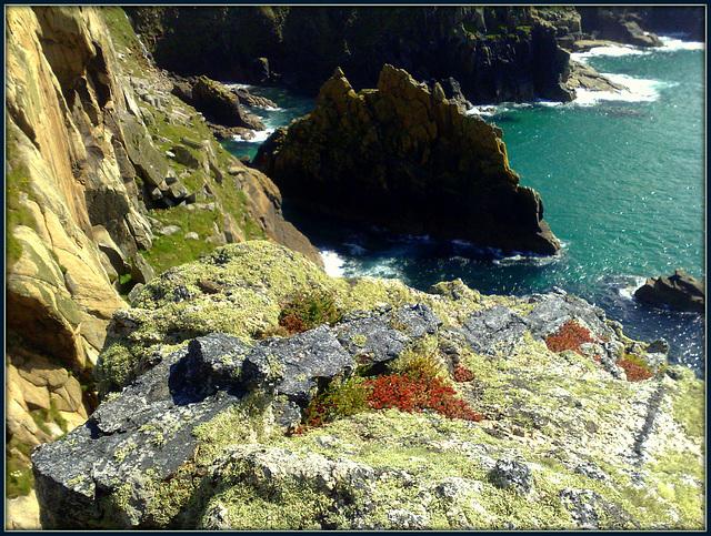 Bosigran Head. Granite, moss and lichen