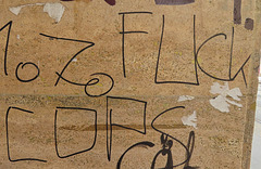 1 (19)...austria vienna ..bad words..graffiti...fuck cops