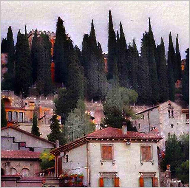 ...once in Verona...