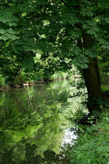 Amazone-sur-Essonne (2)