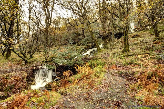 Glendalough 36