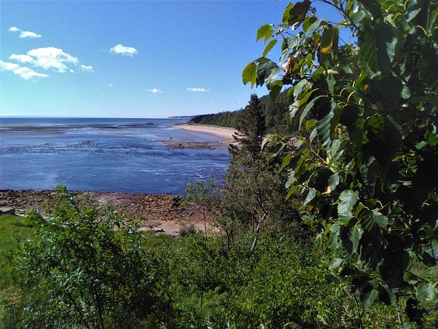 Feuillage et rivage / Shore's foliage (Québec)