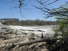 INDIANAPOLIS RIVERINE SCENERY of RAGING WHITEWATER of WEIR of WHITE RIVER with SKY STICKS.