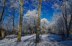 Still und starr ruht der See ... Silent and frozen lies the lake ...