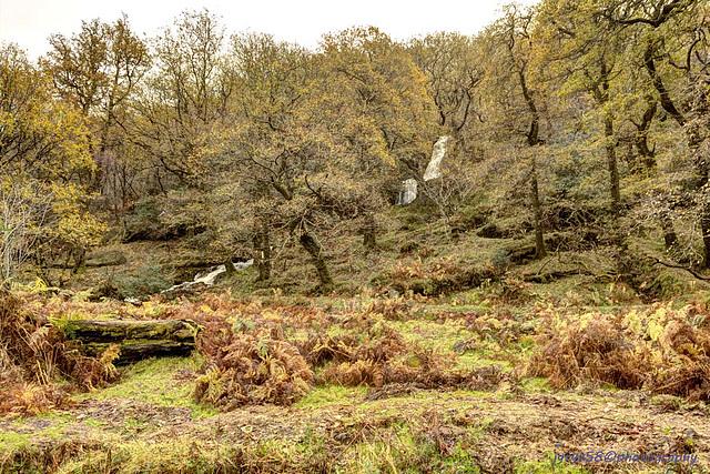 Glendalough 39