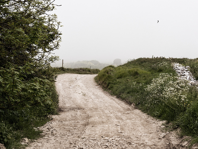 Graveled Road on Purbeck