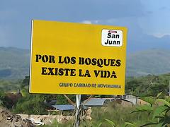 Environmental consiousness Peru ☺♥