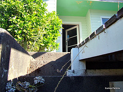 Steps Beside Ramp.