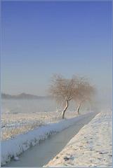 # 12 - Magic Snow Scenery...