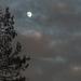 In drei Tage ist der Mond voll ...