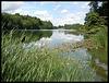River Glyme at Blenheim