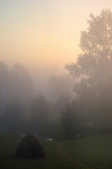 Misty morning in my paradise.