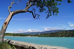 étang de Bonde Provence