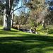 First Creek, Hazelwood Park, Adelaide, SA