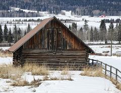 "A rural ""winter"" scene"