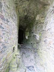 restormel castle, cornwall (4)