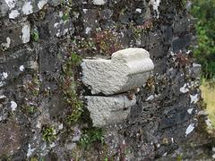 restormel castle, cornwall (5)