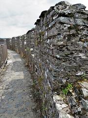 restormel castle, cornwall (6)